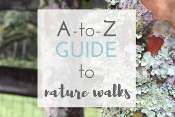 The A to Z Guide to a Charlotte Mason Nature Walk