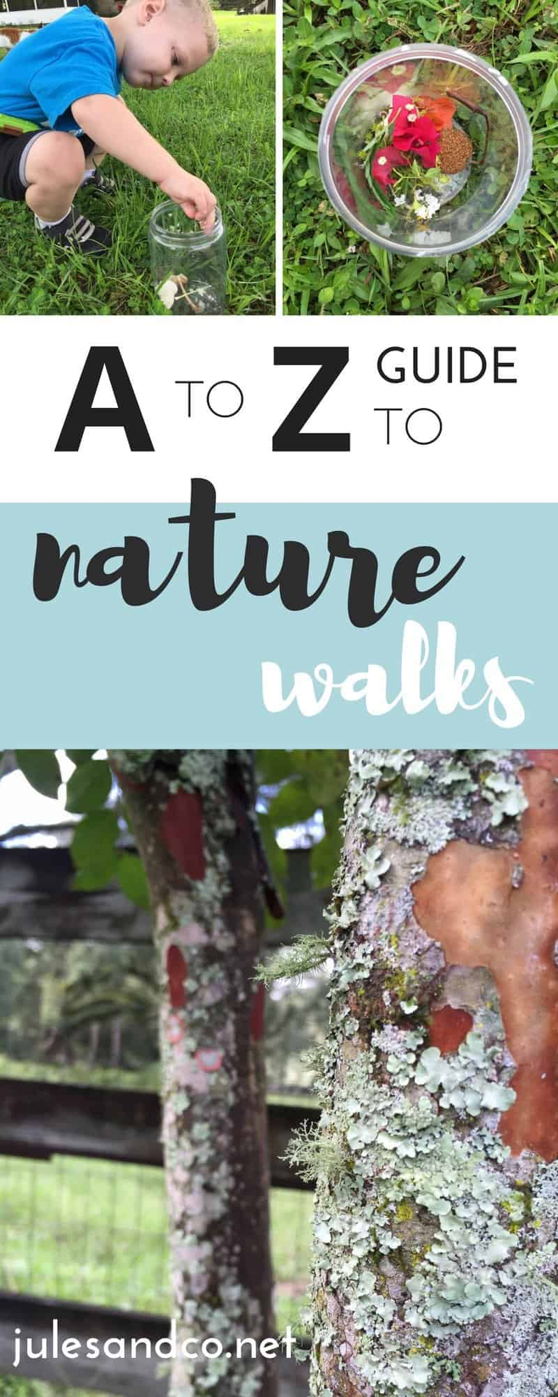 I can't wait to hear how much fun you have with nature walks.