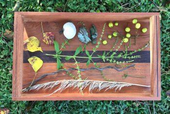 Montessori Nature Sensory Tray