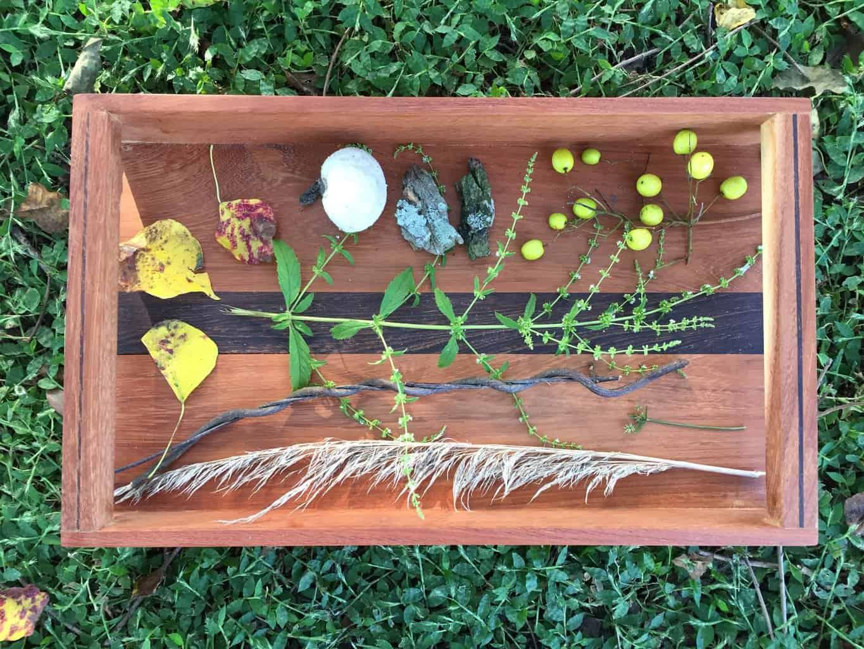 Montessori Nature Sensory Tray   julesandco.net