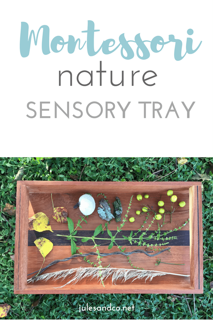 Make a sensory tray from nature! Discover nature with your toddler or preschooler with a Montessori-inspired nature sensory tray.