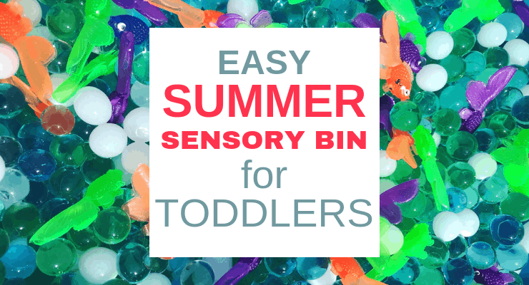 Easy Summer Sensory Bin for Toddlers